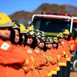 Curso de incêndio florestal